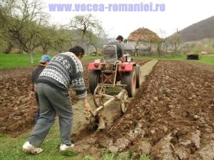 fermierii