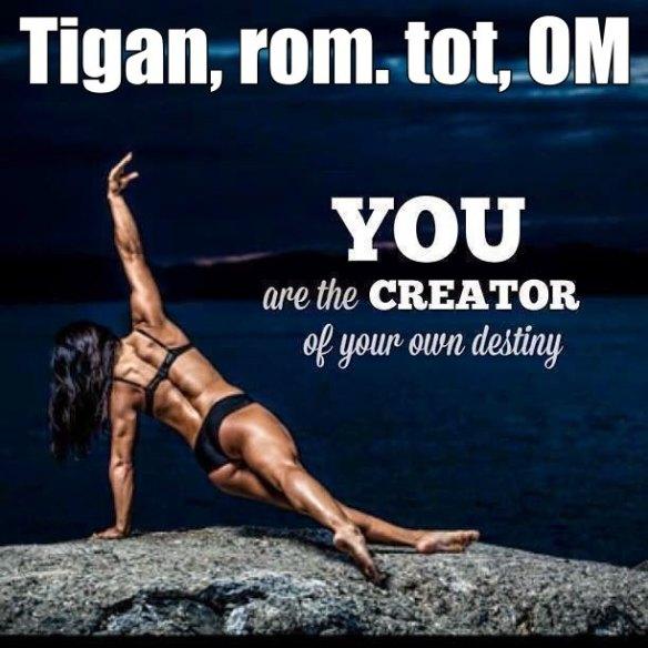 Tu esti creatorul propriului tau destin ...